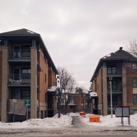 Strathcona Heights, Mann Avenue at Goulborn Crescent. February 2014.