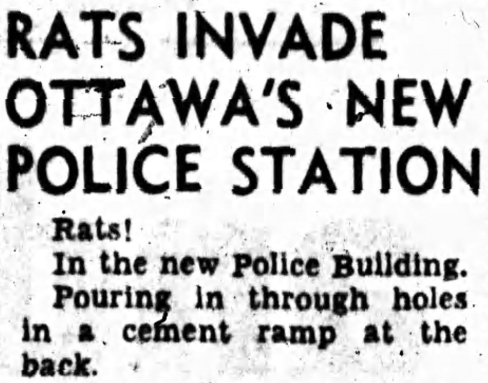 Like all good projects, there were bugs, or in this case rats to iron out. Source: Ottawa Journal, June 22, 1957, p. 1.