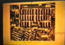 Videos Auschwitz Unknown Facts by Ditlieb Felderer