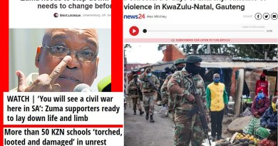 Video & Audio: South Africa: The mass riots, violence & killing: Zuma Riots – Initial Analysis