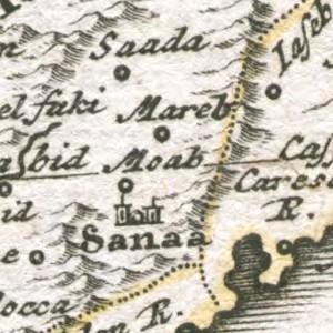 Moab 1737 Hase