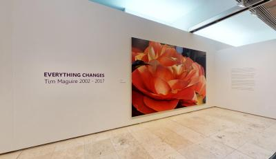 Newcastle Art Gallery: EVERYTHING CHANGES by Tim Maguire