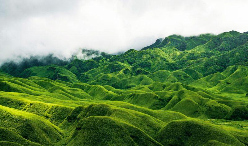 Nagaland - Dzukou Valley