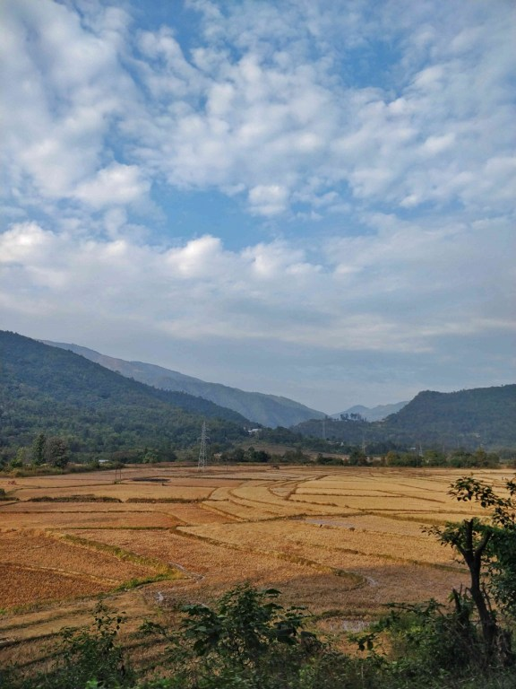 During the harvest season, the views on the way to Andro are filled with golden hues