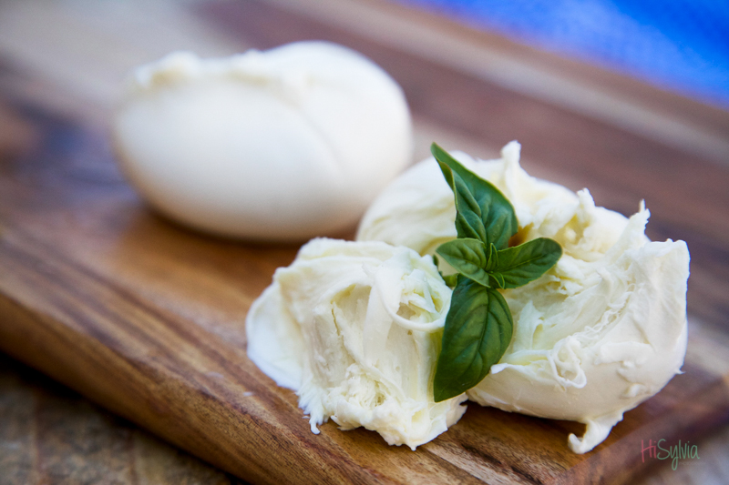 bufala mozzarella photo