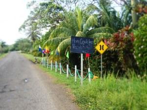 Costa Abajo, Cevicheria el Pargo Lunar, Restaurant, Karibik, Meeresfrüchte, Panamaküste,