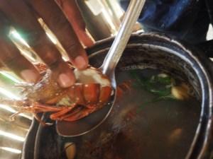 Seafood Preparation, Recipe Seafood, Recipe lobster, recipe fish, recipe panama, prepare lobster, prepare shrimps, recipe shrimps, costa abajo, panama travel, travel recipe, travel tips, restaurant panama, restaurant colon, restaurant fish