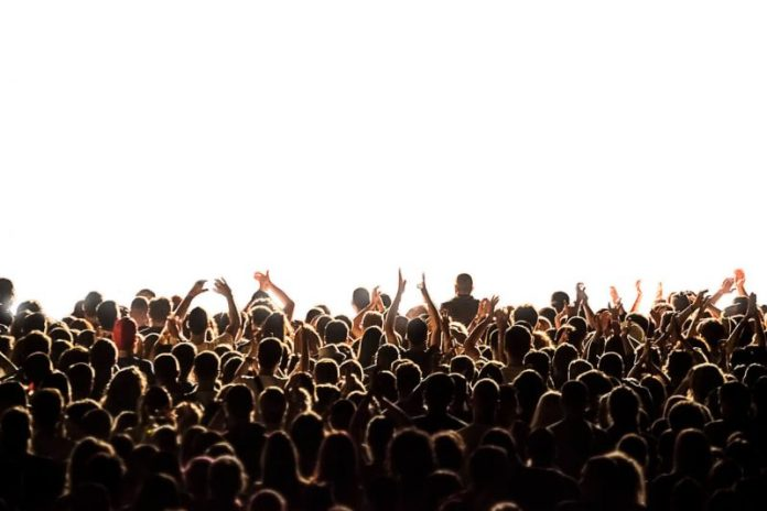 How to Build an Audience-Driven Brand