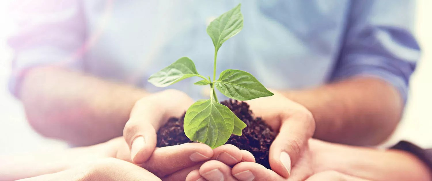 Be more Environmentally friendly and reducing your carbon foot print