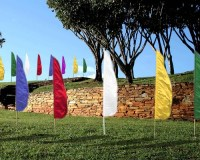 Feather_Flags_Picture