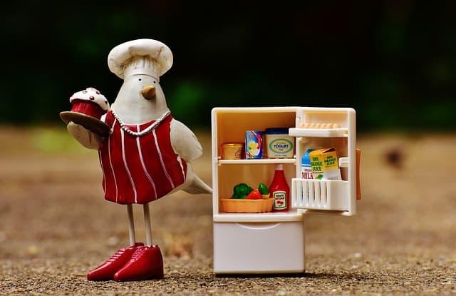 人形と冷蔵庫