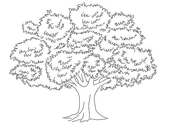 Pernah Diminta Menggambar Pohon Ketika Psikotest Ini Dia Triknya