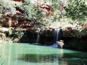 Ferny Pool