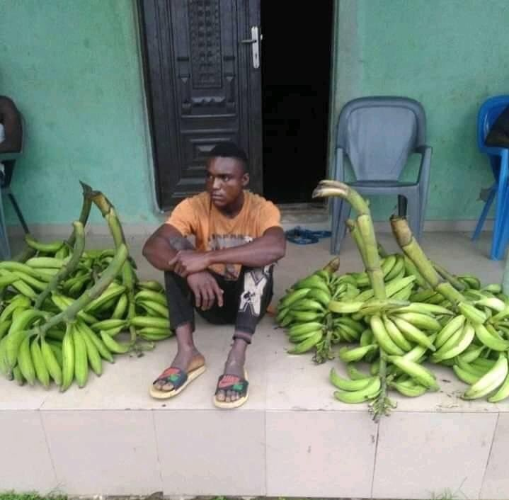 Plantain thief nabbed, says 'my girlfriend demanded N10K for makeup