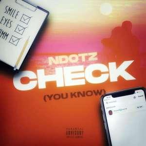 Ndotz drops the long awaited tik tok track – 'Check'