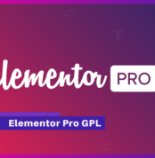 Elementor Pro Core 3.0.15 – Live Page Builder For WordPress