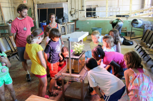weet Water's school-based aquaponics program in action.