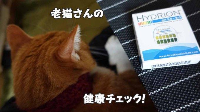老猫の健康チェック!市販のpH検査試験紙で尿のpH濃度を計測