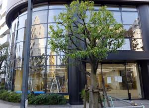 「あゆみBOOKS」の跡では内装工事が行われている(4月16日)