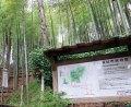 小机城址市民の森