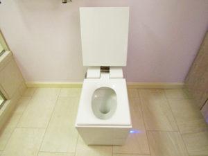 Contemporary Bathroom Remodel (B-82)