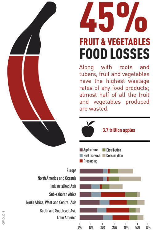 Fruits & Vegetables Loss by UNFAO