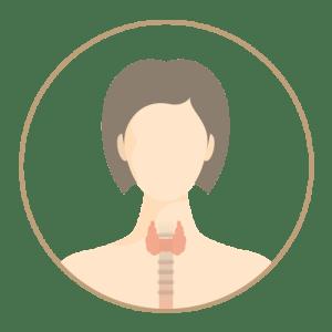 Thyroid Function 甲狀腺功能檢查