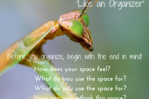 Learn to see like an organizer…