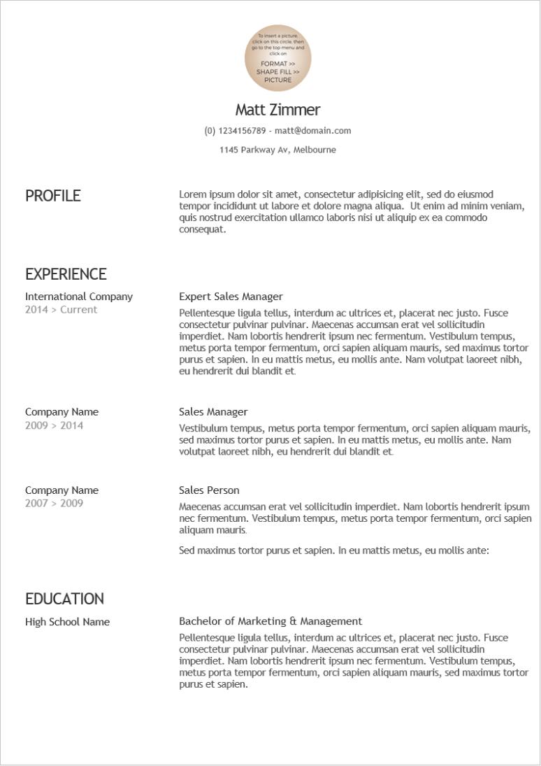 2020 最新精美英文履歷表範本下載