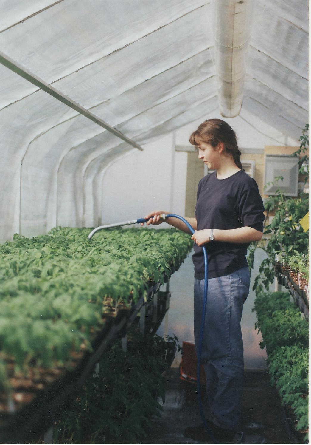 Fresh Veggies Inc Purchased Land And Warehouse