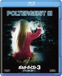 映画:ポルターガイスト3 / 少女の霊に捧ぐ…