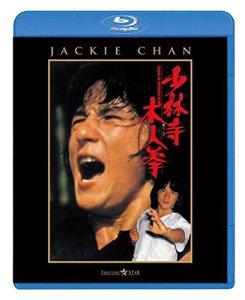 映画:少林寺木人拳