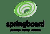Springboard Services