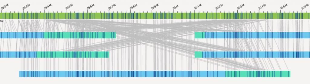 El gráfico muestra muchas líneas que trazan el movimiento de genes de una parte del genoma a otra