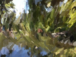 An oil painting of a pond at Beacon Hill Park, Victoria BC.