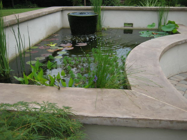 Build Your Own Backyard Pond