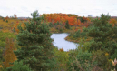 Forks of the Credit in Fall (photo by Fiona A. Reid)