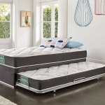 Dream Support King Single Trundle Bed By Sleepmaker Harvey Norman New Zealand