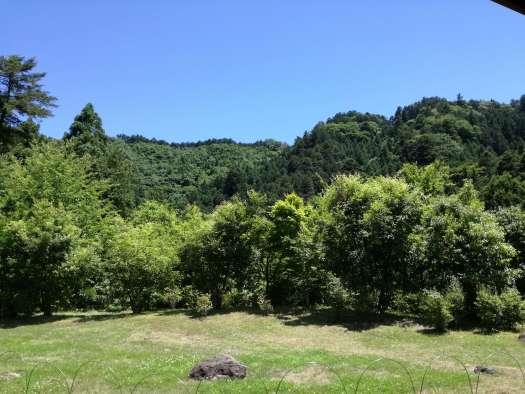 秋川渓谷 瀬音の湯 テラスの庭