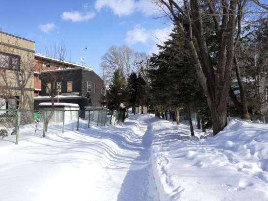 北海道の雪道