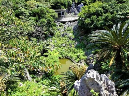 大石林山の池