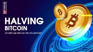 Halving là gì? niềm tin hay cái bẫy giá trị của Bitcoin