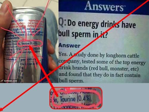 Producteurs de sperme de taureau