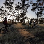 On the morning trails with the Dawn Chorus bike ride from Hobart Mountain Bike Tours