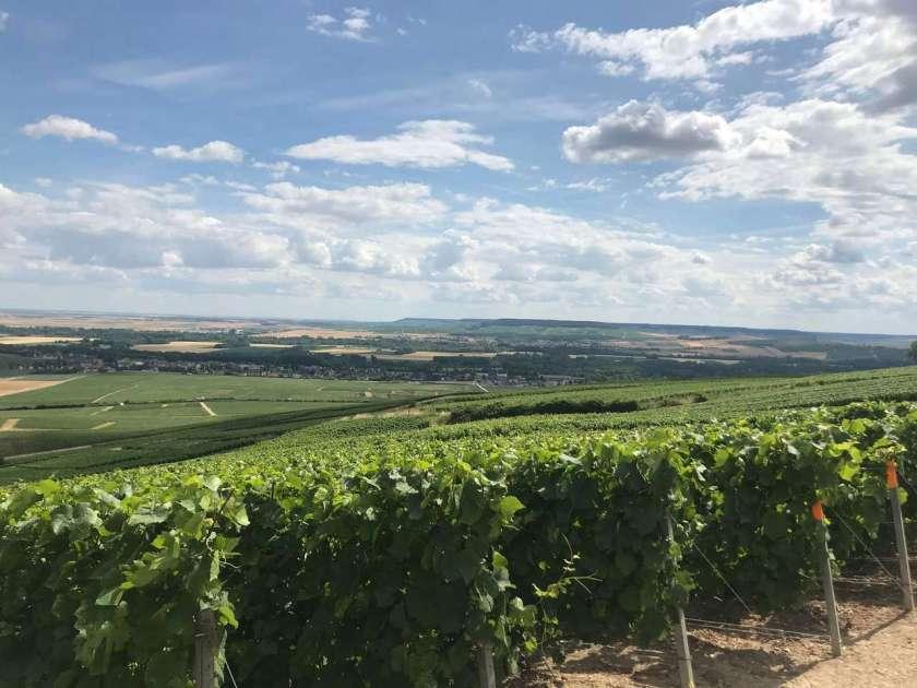 Utsikt fra Mutigny over Marne