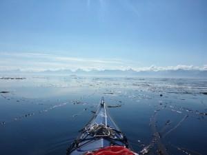 The view of glacier-strewn East Baranof Island.