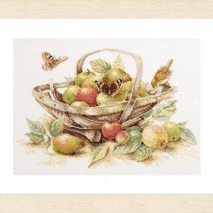 Lanarte Borduurpakket - Mand met appels