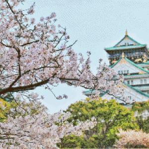 MyHobby borduurpakket - tempel met sakura