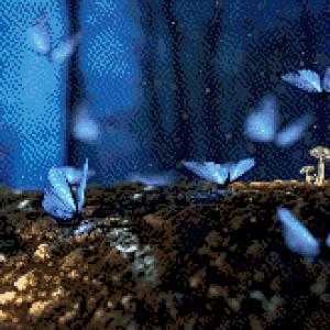 MyHobby borduurpakket - vlinders in het bos