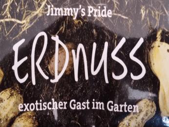 Erdnuss im Garten anbauen